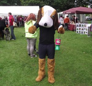 Sam the Dog fundraising